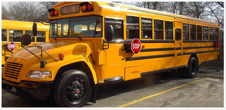 School Buses - Vendor, School & Municipal